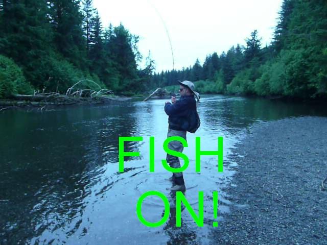 FishOn_Text